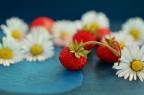 strawberriessummer